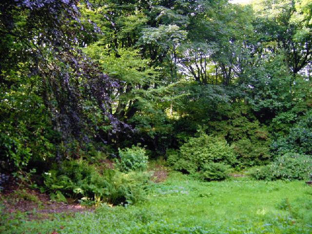 The Quarry Garden at Binscarth