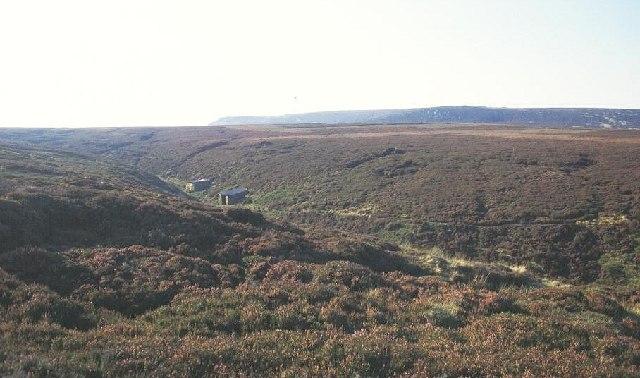 Ronksley Moor
