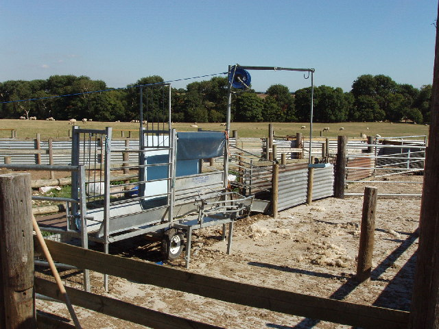 Sheep pens near Notley Abbey