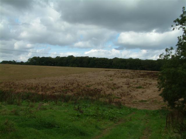 Woodmoorfield Shaw