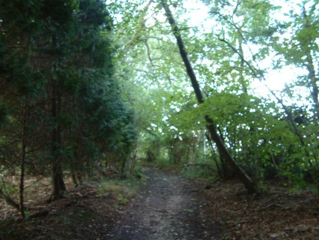 Footpath to Mongewell