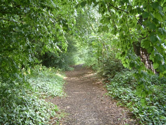 Bridleway from Park Corner