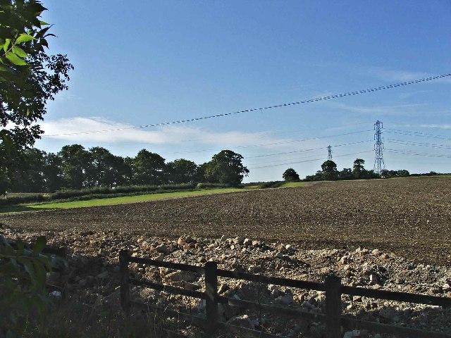 Farmland Chase Farm, Stagg Hill