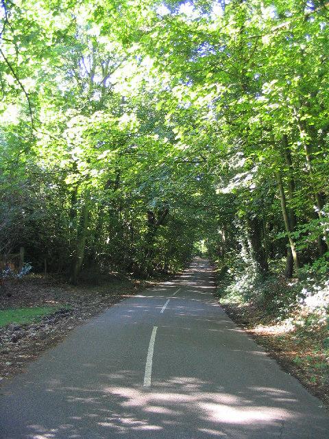 Woodland, Beredens Lane, Great Warley