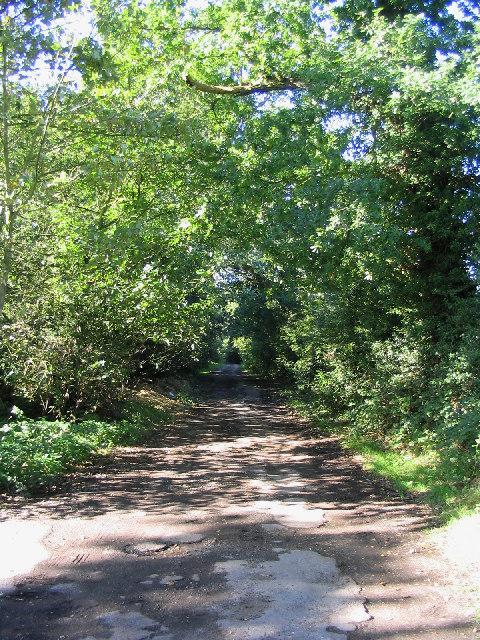 Green Lane, Great Warley