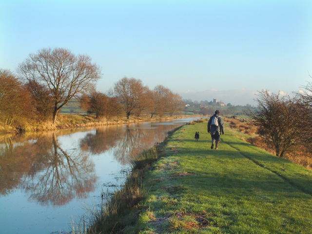 The Royal Military Canal in Winter