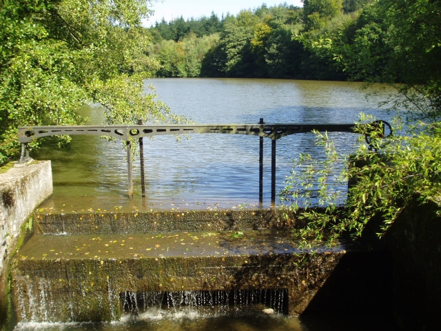 Sheffield Mill pond