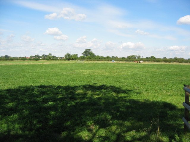 Pasture at Willow Farm, near Harby
