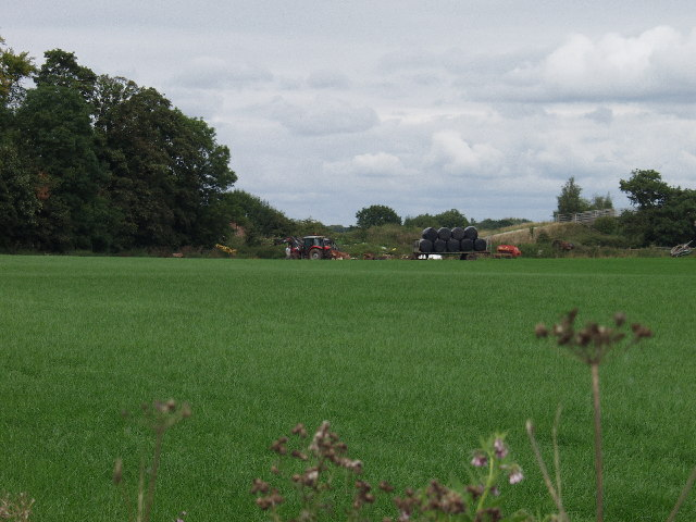 Gathering bales in fields at Hafod House Farm