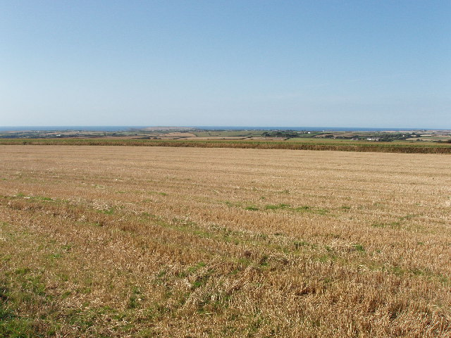 Airfield country - from Bear's Downs to the sea