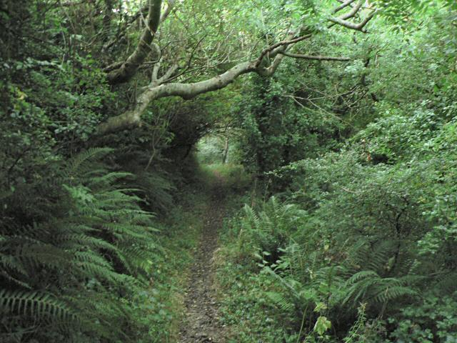 Footpath from Treriffith to the Witches Cauldron