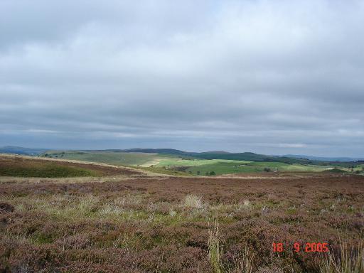 Denbighshire moorland