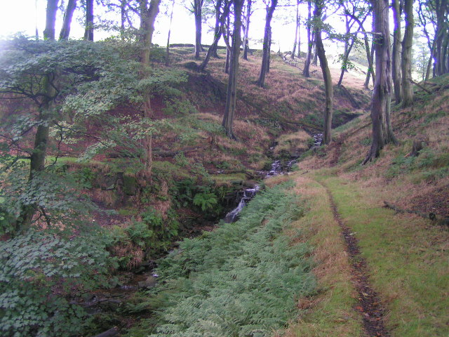Bolehill Clough