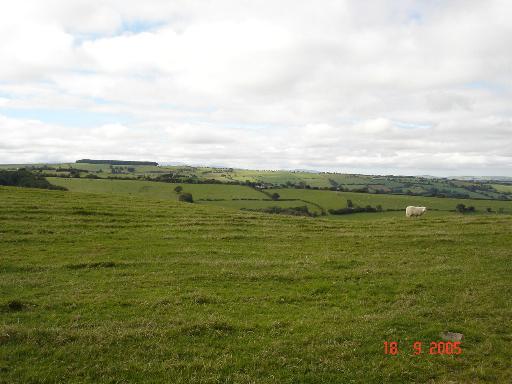 Farmland near Tan y Fron