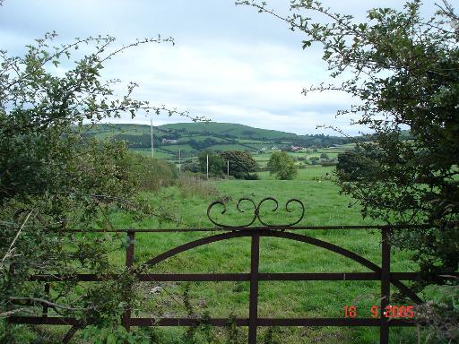 Cae coed farmland