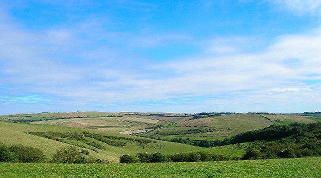 Downland above Brighton