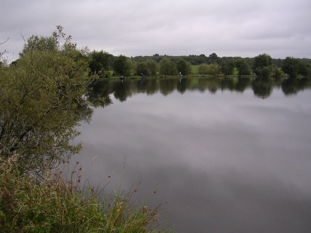 Whins Pond