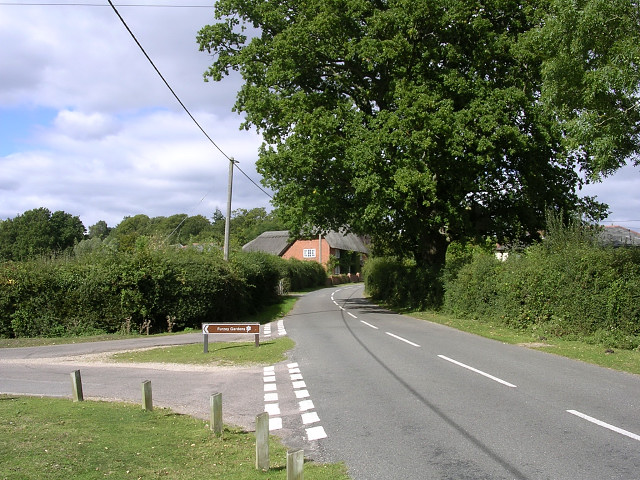South of Seaman's Corner, Minstead, New Forest