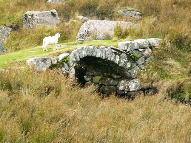 Pack horse bridge (or sheep)