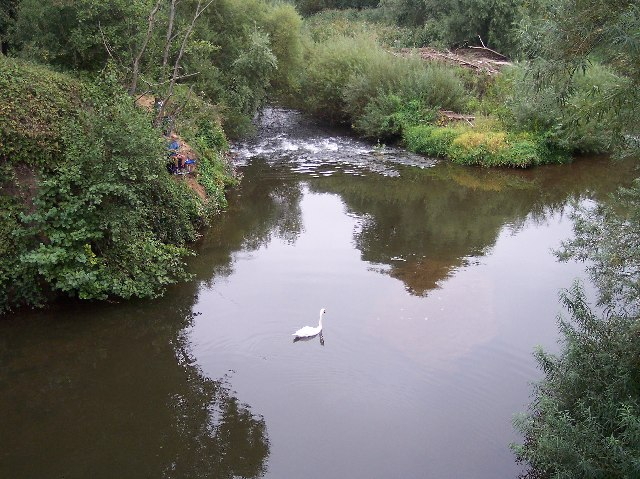 The River Teme from The Bransford Bridge