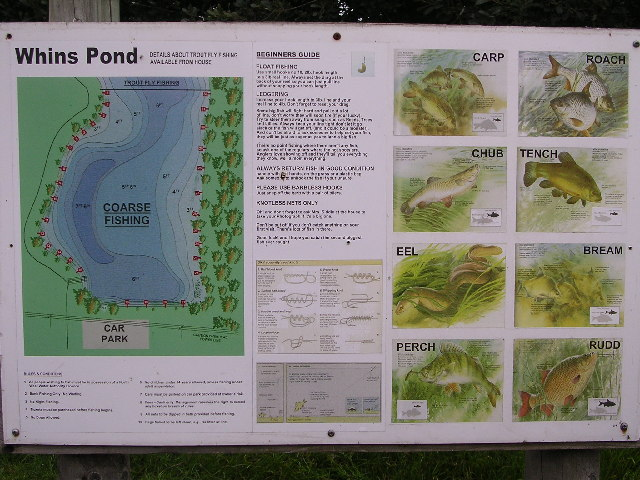 Whins Pond List of Fish