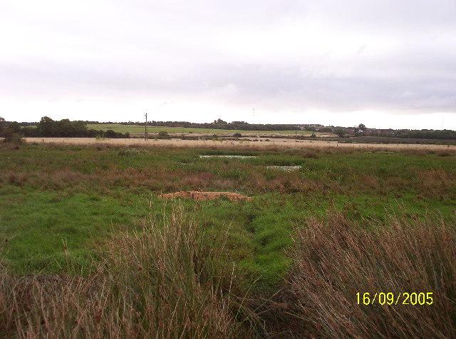 Callerton Pond