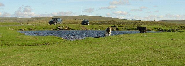 Moorland Pond below Sharpitor, Dartmoor, Devon
