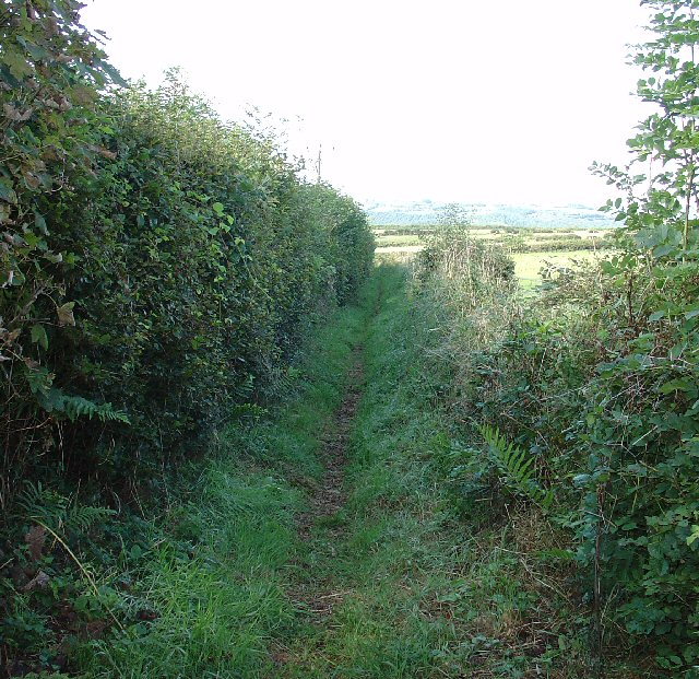 Public Footpath between Horrabridge and Buckland Monachorum, Devon