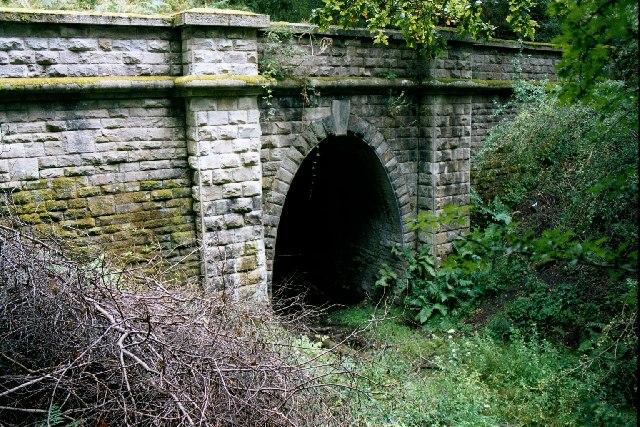 Mierystock Tunnel. Lydbrook, Forest of Dean