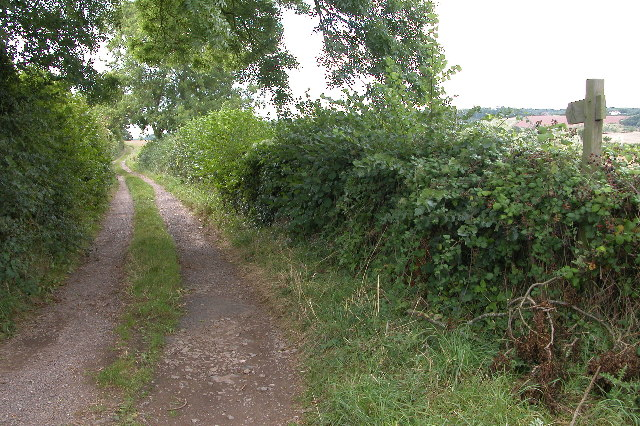 Country Lane and Footpath
