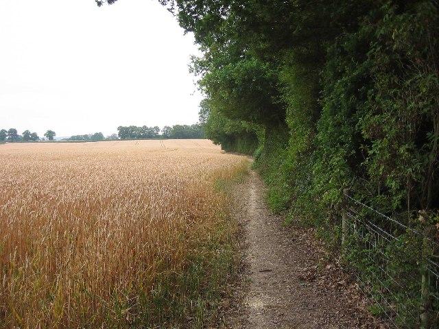 Vanguard Way North of Edenbridge