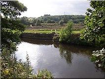 SE1721 : River Calder, Clifton / Bradley by Humphrey Bolton