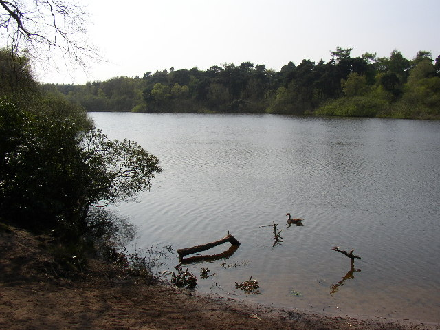 The Pond at Twigmoor Woods