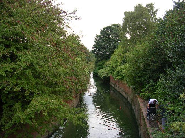 Pennington Brook