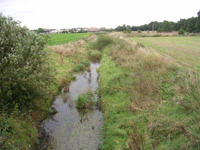 Moss Brook