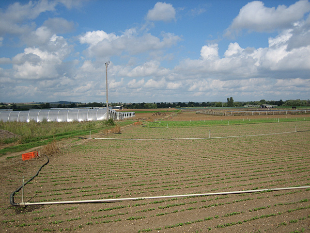 Irrigation and Poly Tunnels