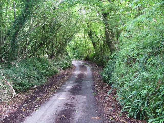 Devon Lane, Arcadia Elburton