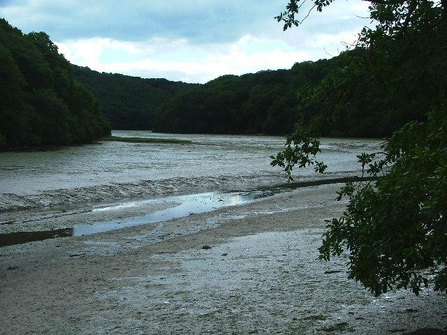 Mud Flats, Cofflete Creek