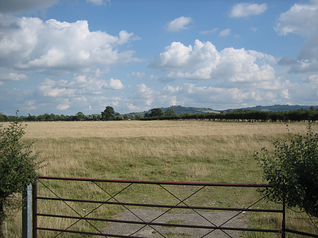 Ridge and Furrow near Pebworth