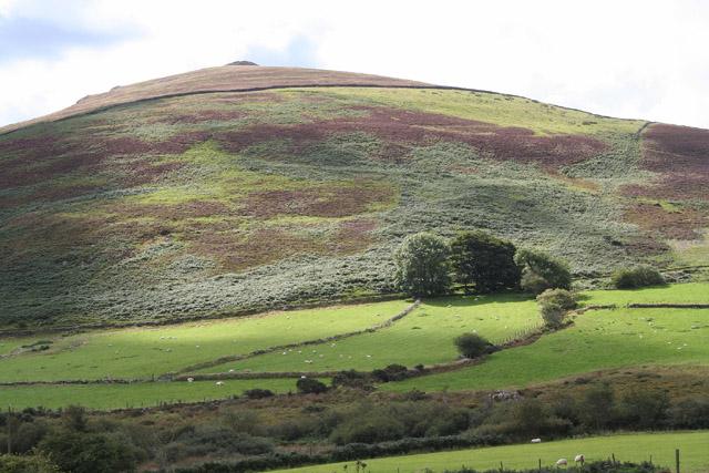 Pistyll: Mynydd Carnguwch
