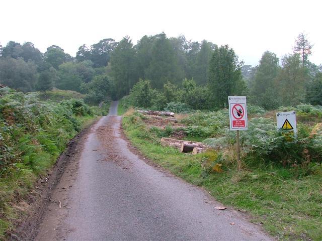 Road to High Park Adjacent to Tongue Intake Plantation