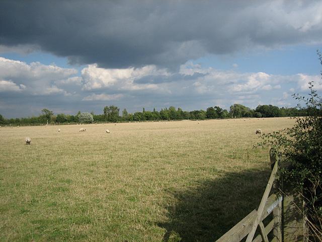 Pebworth Pasture