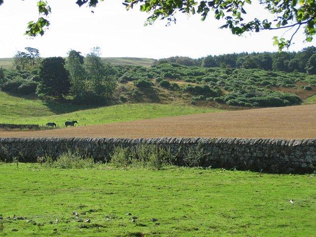 Fields, Cleish.