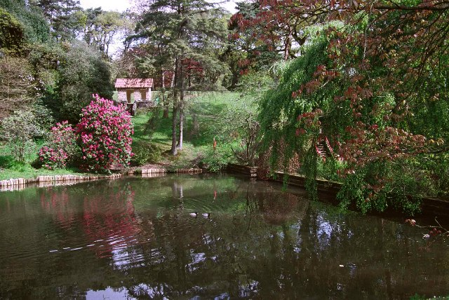 Clyne Gardens, in grounds of Clyne Castle