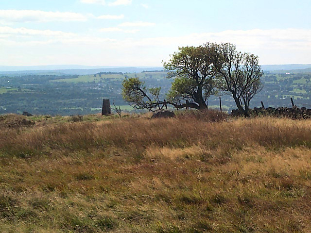Carr Top trig point, Weston Moor