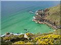 SW4840 : Polgassick Cove by Eryka Hurst