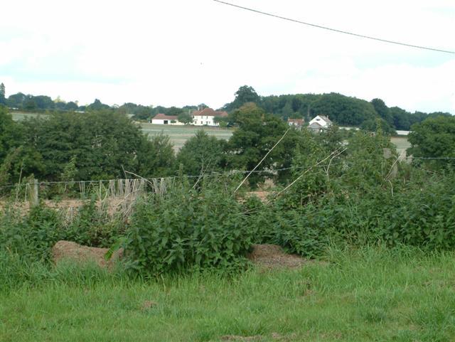 Simms Stud Farm