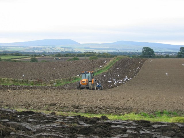 Ploughing, Binny.