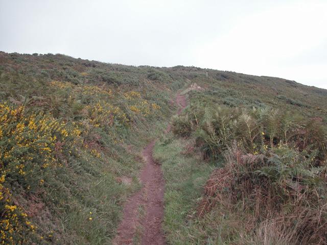 West Moor Cliff.