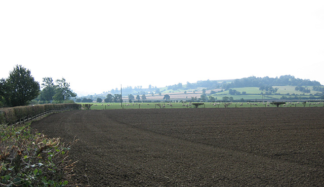 Arable and pasture at Lower Quinton